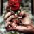 Thumb-1358774422