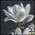 Thumb-1403099615